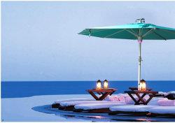 도매 승진 정원 우산 LED 빛을%s 가진 옥외 안뜰 튤립 우산