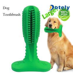 Hundezahnbürste-Kauen-Bissen-Spielzeug-zahnmedizinischer oraler Sorgfalt-Pinsel