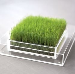 Пользовательское поле акрилового волокна для травяных культур