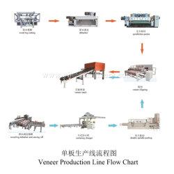 Ligne de production de bois de placage