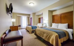 Commerce de gros chinois Comfort Inn Hotel Chambres moderne de meubles en bois MDF