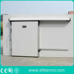 Puerta Deslizante de la Conservación en Cámara Frigorífica del Sitio Automático del Congelador para la Fábrica del Alimento y de la Droga
