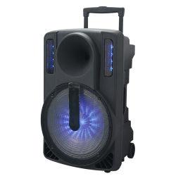 Deux voies Matériau ABS 12inch Batterie Bluetooth L'orateur avec radio FM
