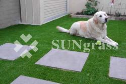 عمليّة بيع حارّ عارية - كثافة يرتّب حديقة عشب اصطناعيّة ([سونق-ل00074])