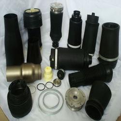 La suspension de la partie de différents types de suspension à ressort de l'air