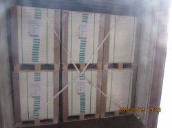 60gsm Leichtes beschichtetes LWC-Papier/LWC-Papier für Etiketten