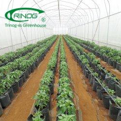 Van de de irrigatiepeper van de daling de serre hydroponic systeem voor landbouwbedrijf