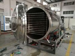 Congelamento de vácuo da Máquina Secadora Congelar vácuo de alimentar o equipamento de secagem
