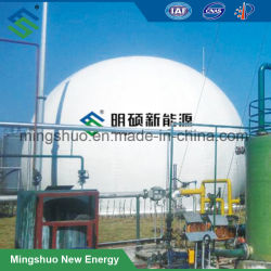 Двойной мембраной биогаза баллон для хранения газа в баллоне
