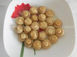 Champion entier en boîte de champignon de couche fait dans l'usine de la Chine pour l'exportation