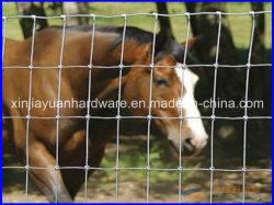 높은 가사 경쟁력 가격 가축 펜스/Grassland Fence