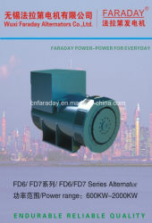 """Два года гарантии Китая партнерств """"Фарадей марки бесщеточный генератор переменного тока генератора"""