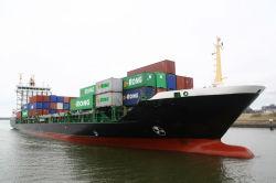 중국에 있는 직업적인 Shipping Agency/중국 Shipping Agency
