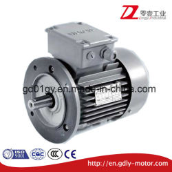 Siemens China 3 Fases de alta eficiencia de inducción de bajo voltaje de CA de hierro fundido los motores eléctricos.