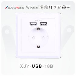 86*86mm Europäer Schuko /Floor Socekt /USB elektrischer Anschluss
