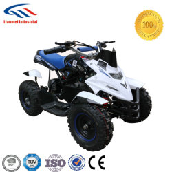 Nuevo modelo de motor de 350 W 24V Batería de plomo ácido ATV