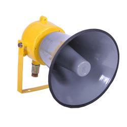 Масло газа поместите большой громкоговоритель 25Вт мини-динамик