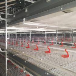 De automatische Volledige Vastgestelde Apparatuur van het Landbouwbedrijf van het Gevogelte/Multi-Tier het Voeden van de Eend van het Frame van H Kooi