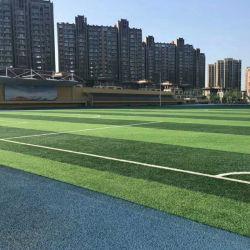 Fornitori cinesi Professional Calcio 50mm erba artificiale