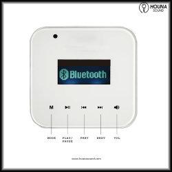 Intelligenter Hintergrund-Musik-Verstärker mit Controller