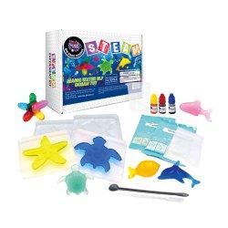 Ciência brinquedos educativos kits para o Ensino Primário