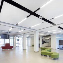 環境に優しく健全な補強の音響のミネラルファイバーガラスの天井