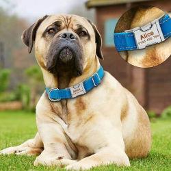 Fabricante de Venta caliente Tejido de nylon de logotipo personalizado Collar de perro