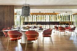 Evento domestico Corridoio che pranza la presidenza del metallo della mobilia del ristorante della tavola rotonda