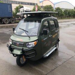 جديدة طاقة [سلر بنل] قوة كهربائيّة درّاجة ثلاثية سيارة [300و] [500و]