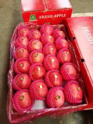 Indonesië papier verpakt FUJI Appels vruchten