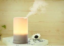 Pièces humidificateur à ultrasons Nebulizing diffuseur d'huile essentielle pour l'arôme