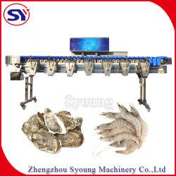 等級分けの重量を量る機械をソートする凍結する未加工エビのSurimiのカニの高性能の重量
