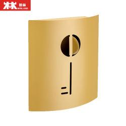 Contenitore chiave chiave d'acciaio galvanizzato fissato al muro decorativo di Governo di memoria del supporto del giardino con gli ami