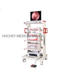 Hochey Medical Großhandel Preis HD Video Laparoskopie / Hysteroskopie Turm Endoskop-System
