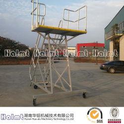 Berufs-Soem-Aluminiumeinstieg-Strichleiter