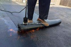 l'asfalto bituminoso applicato /Torch di 3mm/4mm/impermeabilizza//Modified d'impermeabilizzazione /APP /Sbs/membrana del bitume per coprire /Basement/ nel sottosuolo/stanza da bagno della cucina