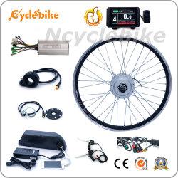 Certification CE Accessoires de vélo électrique 250 W avec ts de la batterie et affichage coloré