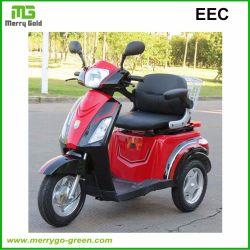 نطاق الإطار الفولاذي EEC 55 كم سكوتر دراجة بخارية كهربائي بثلاث عجلات