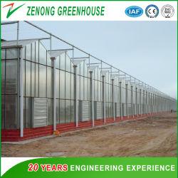 Сельскохозяйственных Multispan выбросов парниковых газов из закаленного стекла используется в качестве цветочный дом