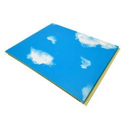 Céu azul de plástico na parede de painéis laminados decorativos de cobertura