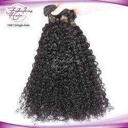 100% Ruwe Maleise Virgin Haar Weven Menselijk Haar Verlenging Krullend Haar