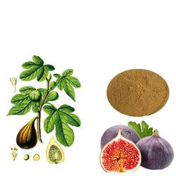 Природные рис извлечения/ Ficin/ficus carica фрукты П. E