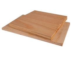 Fine Pine Wood Feuerfest und Moisture-Proof-Sperrholz