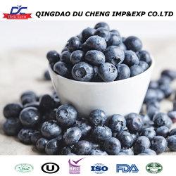 La Chine Des fruits frais en vrac de bleuets sauvages surgelés IQF