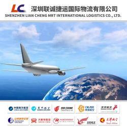 Китай Экспедитор морских перевозок от двери до двери Шэньчжэнь/Шанхай/Нингбо Европы Португалия/Бельгия и Германия логистических услуг