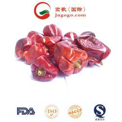 イートー乾燥した赤く自然なChaotian Tianyingの唐辛子
