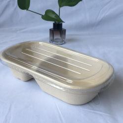 Compartimento Dois Takeaway descartáveis biodegradáveis Lancheira com tampa Pet 850ml