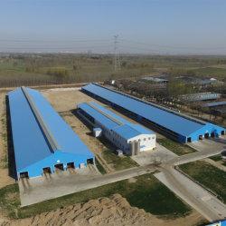 2000 metros cuadrados de almacén de acero de construcción con 8% de descuento