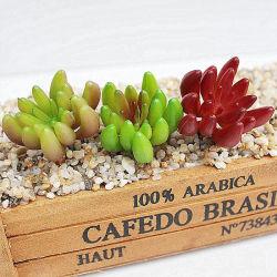 Bonsai Tropical Popular Planta artificial suculentas Mín.