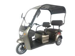 Elektrisches Dreirad des neuen Entwurfs-V3 2021 mit 48V 800W Motor